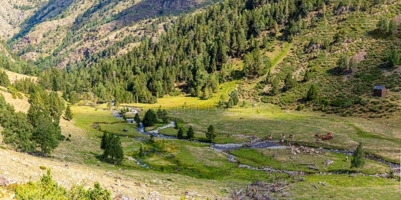 Beautiful Landscape in the Pyrenees in Pallars Sobira, Catalonia stock photos