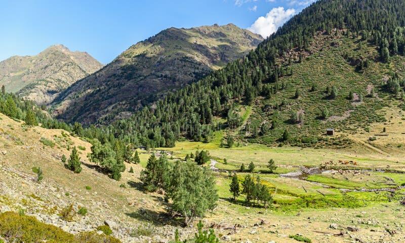 Beautiful Landscape in the Pyrenees in Pallars Sobira, Catalonia stock photo