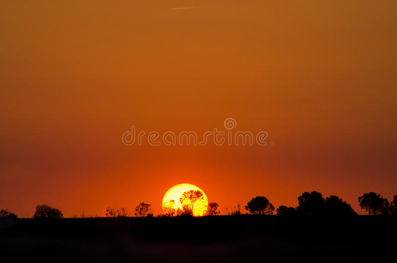 Beautiful landscape image with trees silhouette at sunset, Spain royalty free stock photo