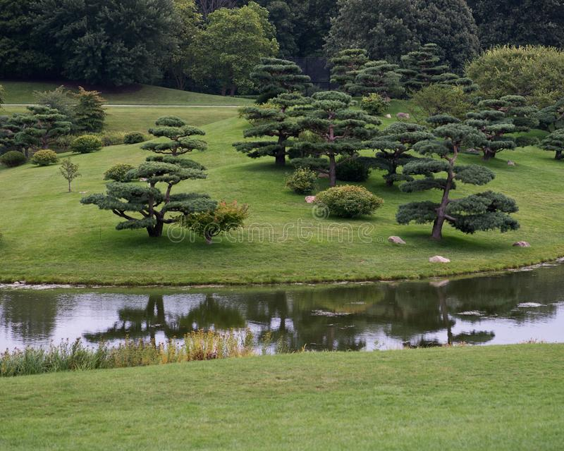 Beautiful landscape in Japanese garden royalty free stock photos