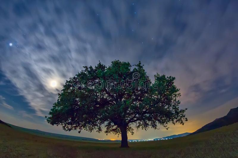 Beautiful landscape with a lonely oak tree, dramatic clouds and a starry night sky with moon light stock image