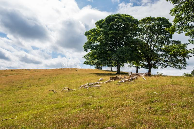 Beautiful Landscape in Lyme Park estate. Landscape in Lyme Park estate. The estate is managed by the National Trust and consists of a mansion house surrounded by royalty free stock photo