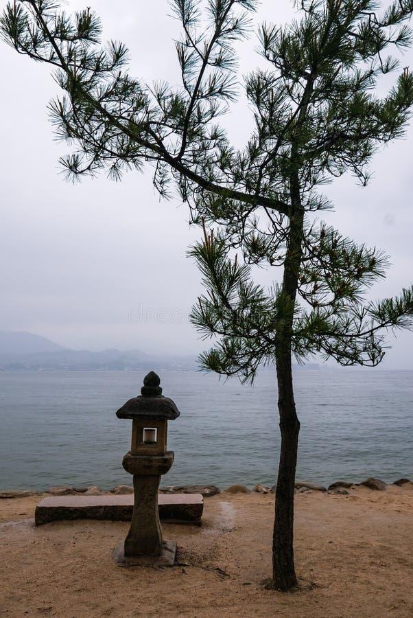 Beautiful landscape of Miyajima island. With stone lantern and pine tree stock images