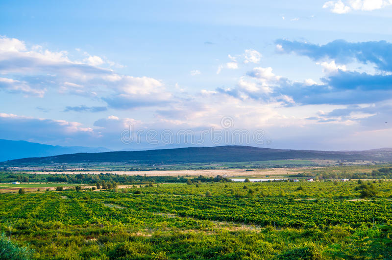 Beautiful landscape of a mountain and green field, blue sky with white clouds royalty free stock photo