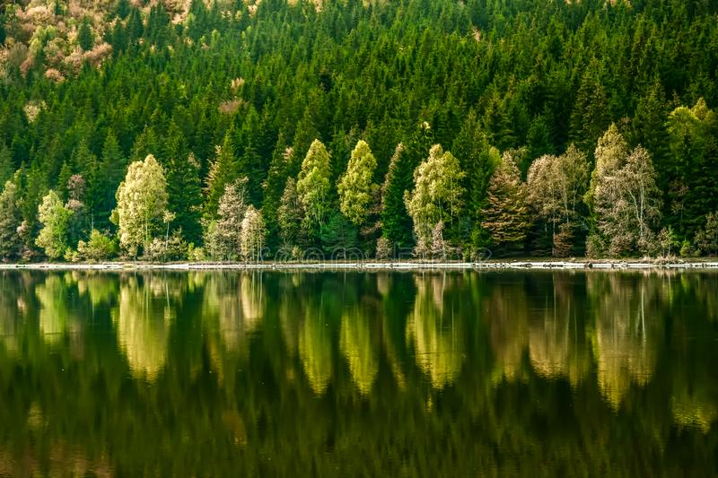 Beautiful landscape mountain lake volcanic natural reflection trees colors Romania stock photo