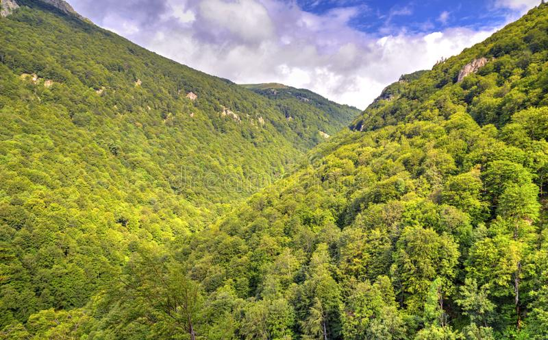 Beautiful landscape in the mountain range. Beautiful summer landscape in the mountain range royalty free stock images
