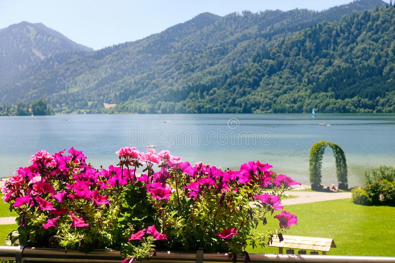 Beautiful Landscape with Mountains, Lake and Pink Flowers. Outdoor Scenic Seascape. Holiday Place.  royalty free stock photos