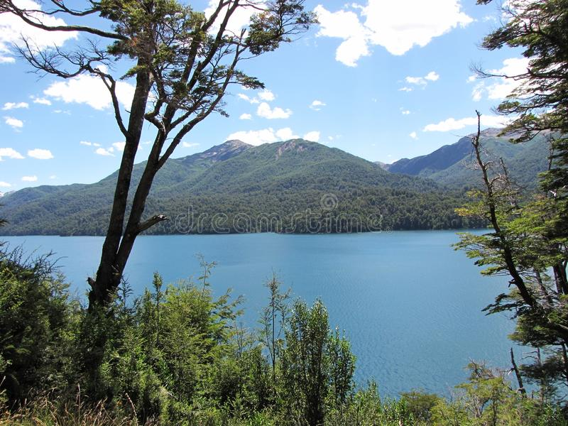Beautiful landscape of mountains and lakes surrounded by trees and branches in Bariloche, Argentina. stock image
