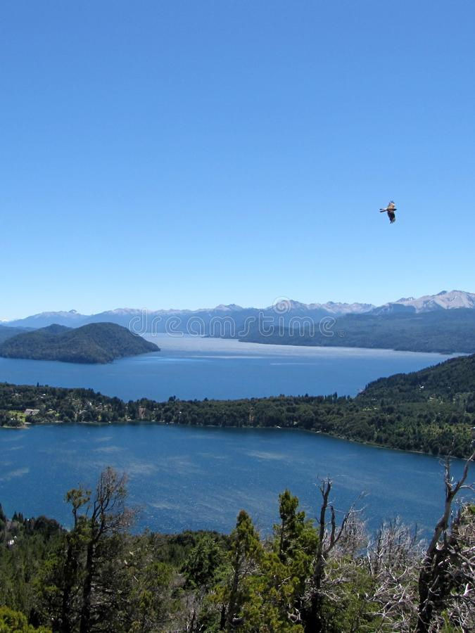 Beautiful landscape of mountains, lakes, trees and a bird in Piedra del Aguila, Argentina. royalty free stock image