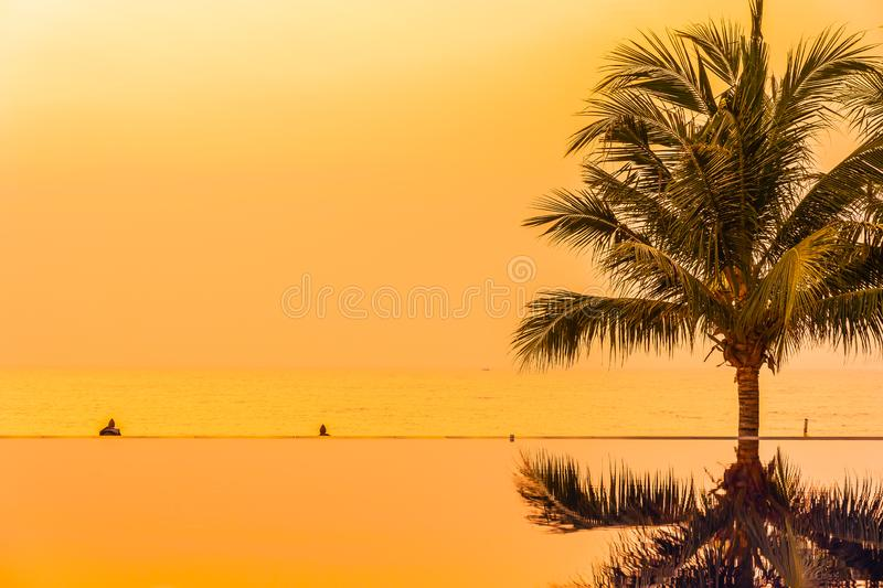 Beautiful landscape outdoor with coconut palm tree around swimming pool in hotel and resort at sunrise or sunset time. For leisure vacation and travel royalty free stock image