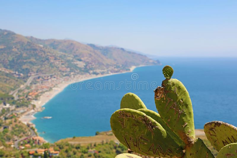 Beautiful landscape panorama of Sicily coastline with focus on the cactus. Blue Mediterranean sea and green mountians in Taormina royalty free stock photos