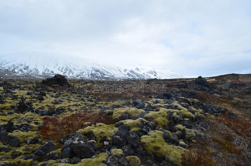 Icelandic landscape of a snow capped mountain and a lava field stock photography