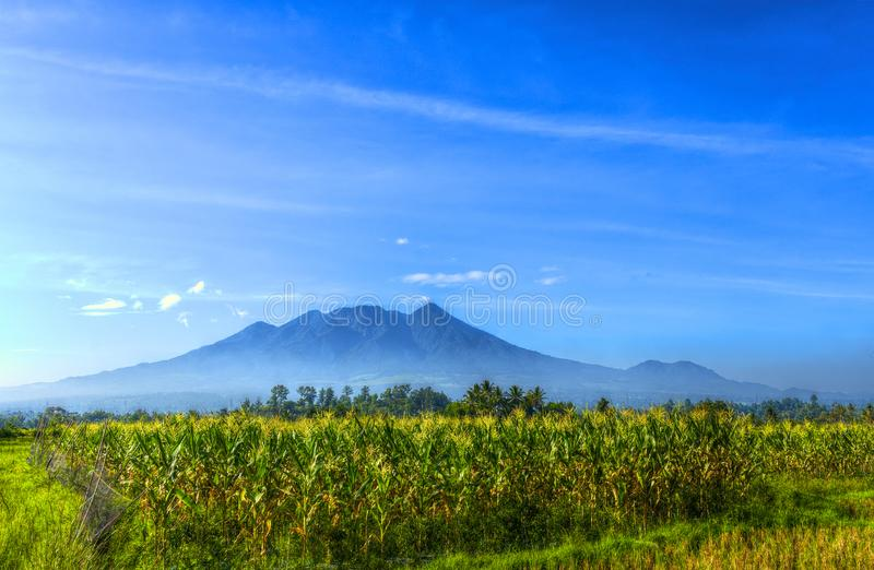 Beautiful Landscape Photo of Mountain in the Morning From the Corn Field With Clean Blue Sky. Beauty Landscape Photo of Mountain in the Morning From the Corn stock images