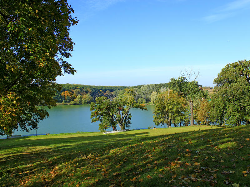 Beautiful landscape with picturesque lake and trees royalty free stock images