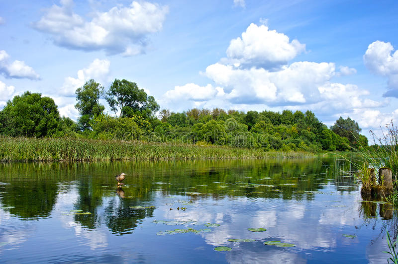 Download Beautiful Landscape With Reflection On River Blue Sky And Clouds Stock Image - Image: 40840249