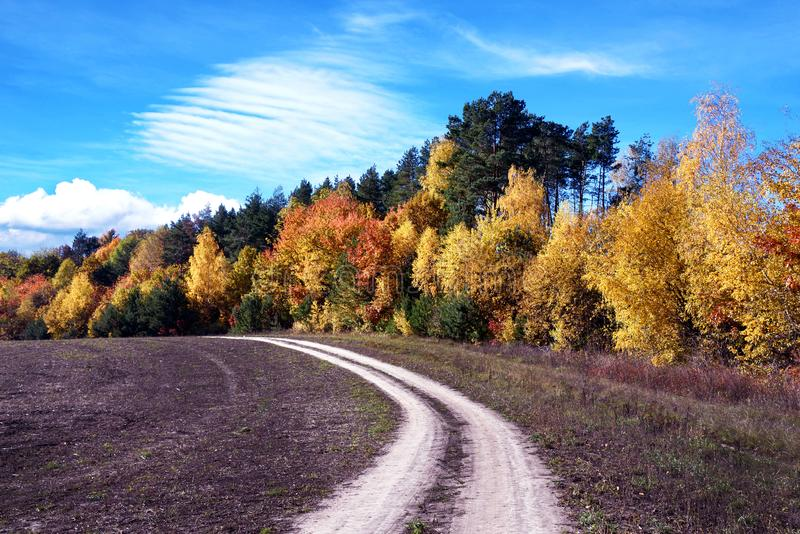 Beautiful landscape with road near autumn forest loop, purpose, life search,  arc - concept royalty free stock photos