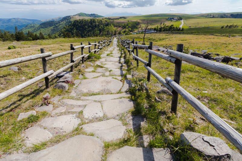 Beautiful landscape road view of Utsukushigahara park ,Nagano , stock images