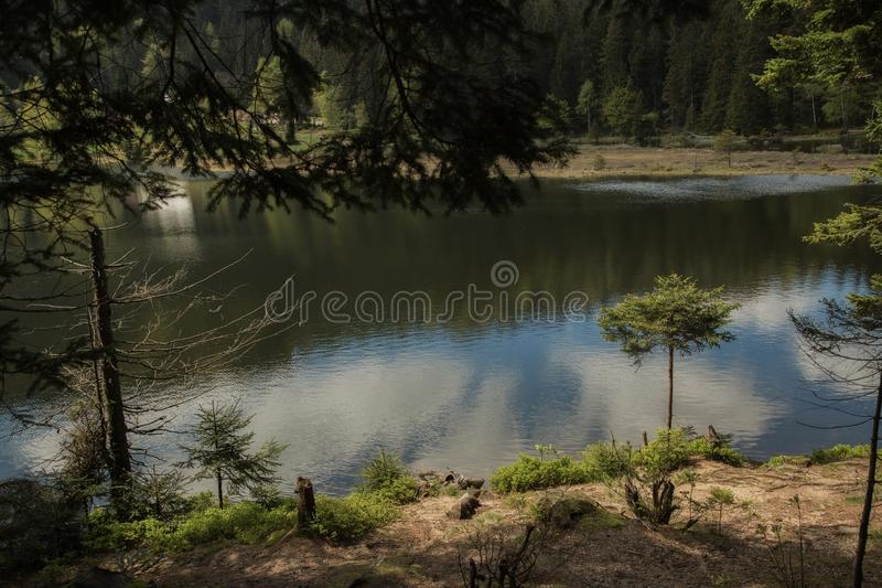 Beautiful landscape scene at the small Arbersee. In Bavaria stock photo