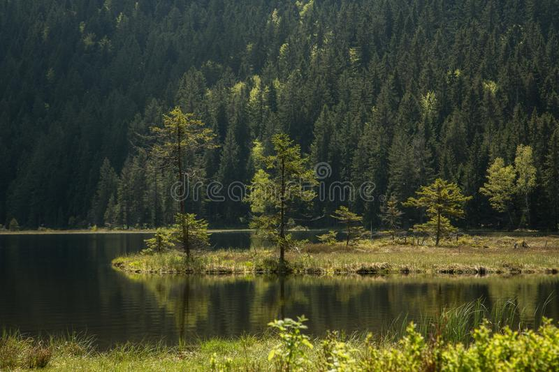 Beautiful landscape scene at the small Arbersee. In Bavaria royalty free stock image