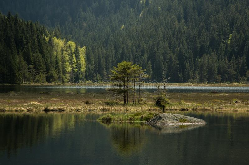 Beautiful landscape scene at the small Arbersee. In Bavaria royalty free stock images