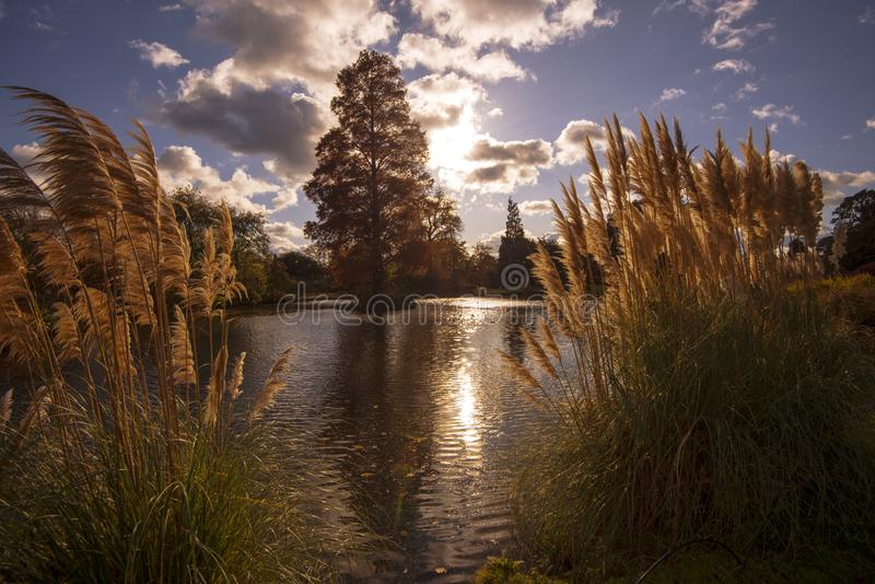 A stunning lakeland scene at Wakehurst Place, West Sussex, England. Beautiful landscape scenery at Wakehurst Place in West Sussex, England in autumn stock photos
