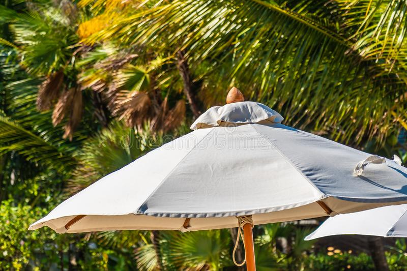Beautiful landscape of sea ocean on sky with umbrella and chair around luxury outdoor swimming pool royalty free stock photo