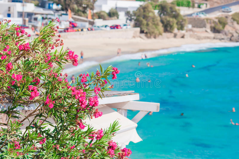 Beautiful landscape with sea view on Mykonos island, Greece. Typical greek traditional view on Mykonos Island, in Greece royalty free stock image
