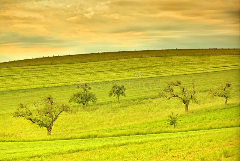 Beautiful landscape in the spring season stock photo