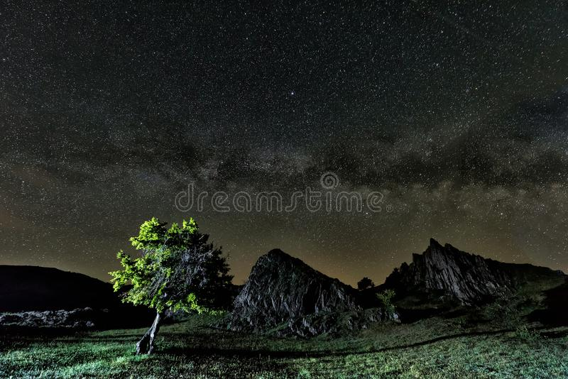 Beautiful landscape with a tree and rocks and a starry night sky stock photo