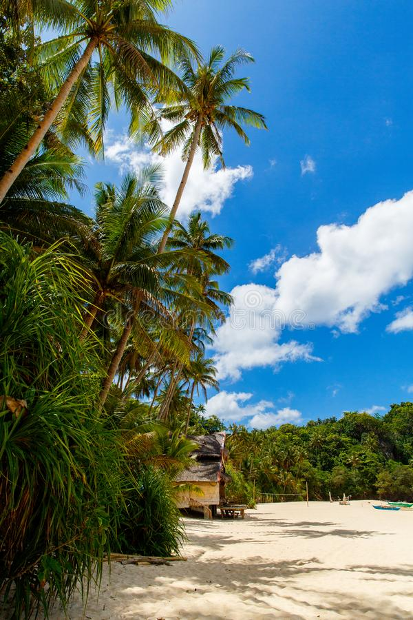 Beautiful landscape of tropical beach, bamboo hut, coconut palm, sea and white sand. Summer vacation concept royalty free stock images