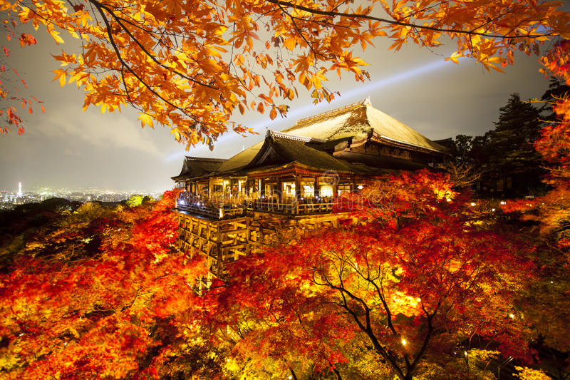 Beautiful landscape veiw of autumn season with colorful maple tr royalty free stock image