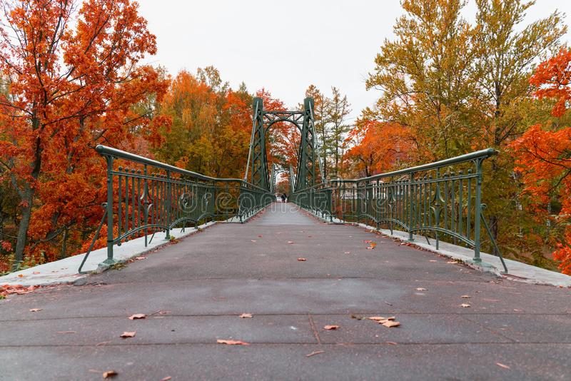 Beautiful landscape view of the alley with asphalt path in the autumn Park in the city. Beautiful landscape view of the alley with asphalt path in the autumn stock images
