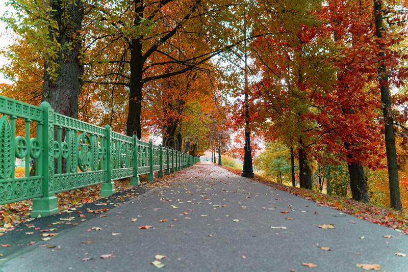 Beautiful landscape view of the alley with asphalt path in the autumn Park in the city. Beautiful landscape view of the alley with asphalt path in the autumn royalty free stock photos