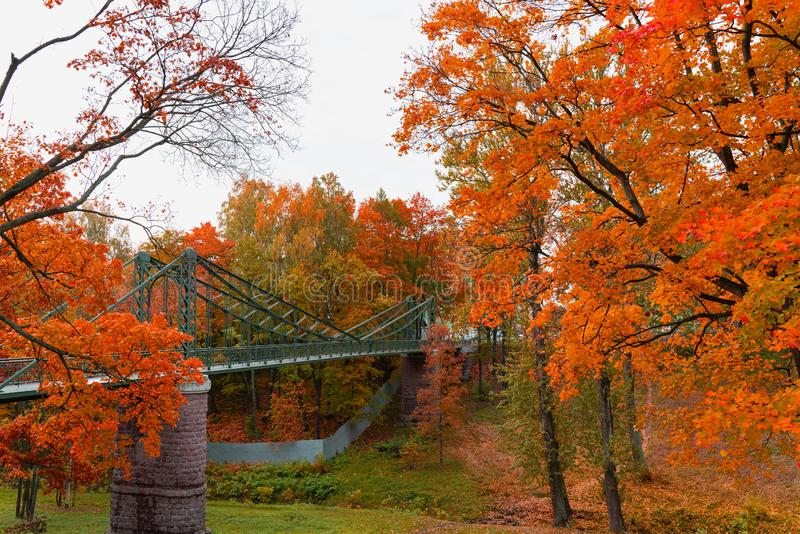 Beautiful landscape view of the bridge with asphalt path in autumn Park in the city. Beautiful landscape view of the bridge with asphalt path in autumn Park royalty free stock images