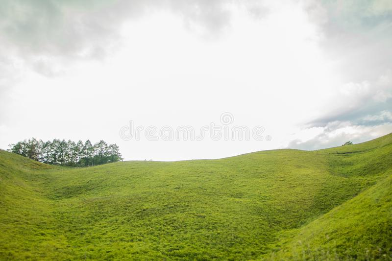 Beautiful landscape view of green grass with sky background. In Utsukushigahara park is one of the most important and popular natural place in Nagano Prefecture royalty free stock photos