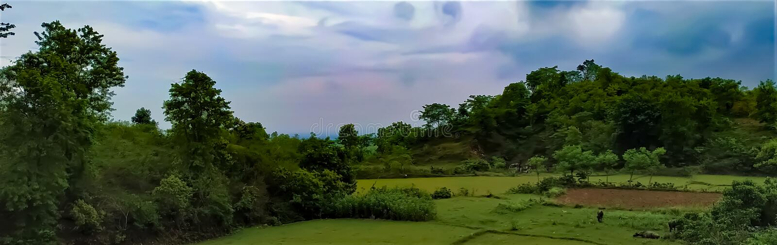 A beautiful landscape view of Indian rural area, skyline view with trees, fields and cloud. This is a picture of a beautiful landscape view of Indian rural area royalty free stock images