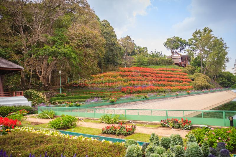 Beautiful landscape view of red flower garden and the small cottage in the forest at Bhubing palace, Chiang Mai, Thailand. stock photo