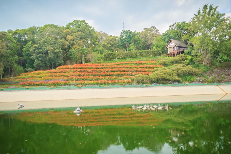 Beautiful landscape view of red flower garden and the small cottage in the forest at Bhubing palace, Chiang Mai, Thailand. stock photography