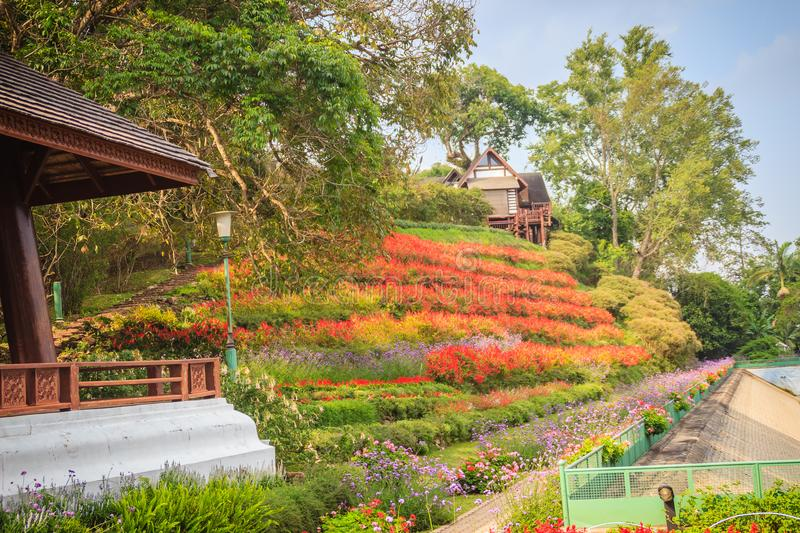 Beautiful landscape view of red flower garden and the small cottage in the forest at Bhubing palace, Chiang Mai, Thailand. stock images
