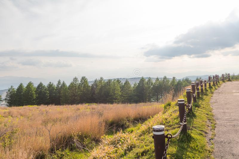 Beautiful landscape view of Utsukushigahara park with sky ba royalty free stock photography