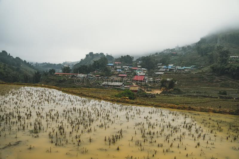 Beautiful landscape views of rice terraces during the winter off season with muddy water stock image