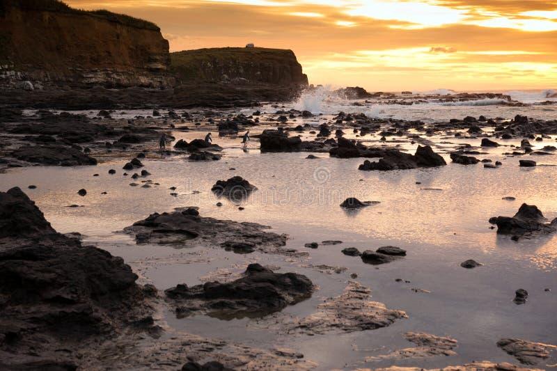 Beautiful Landscape Of Waikawa Bay In Sunrise Times, South Island, New Zealand Royalty Free Stock Images