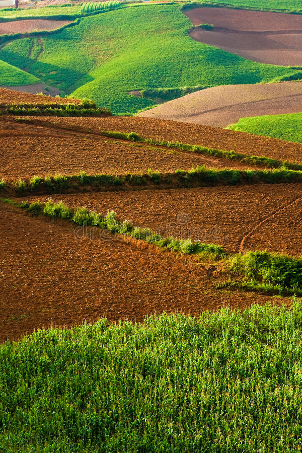 Download Beautiful Landscape In Yunnan, China (3) Stock Image - Image: 12273685