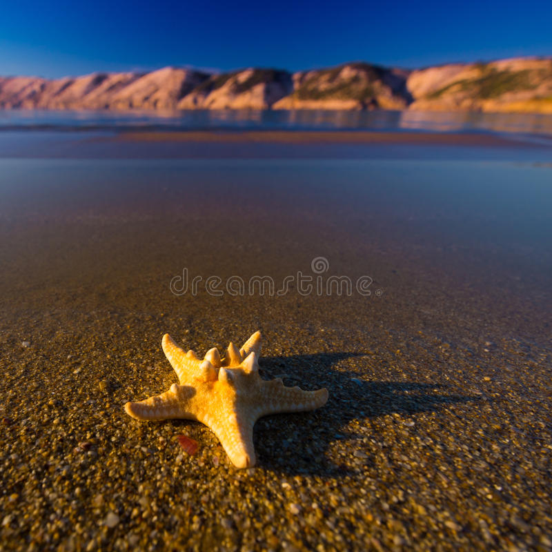 Beautiful landscapes, starfish on the beach in Croatia stock image