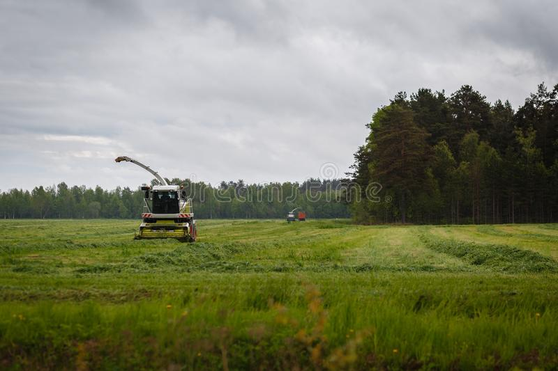 Beautiful lansdscape with haymaking or combine a field. With cut grass royalty free stock photos