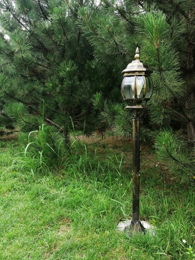 Beautiful lantern on the grass stock photography