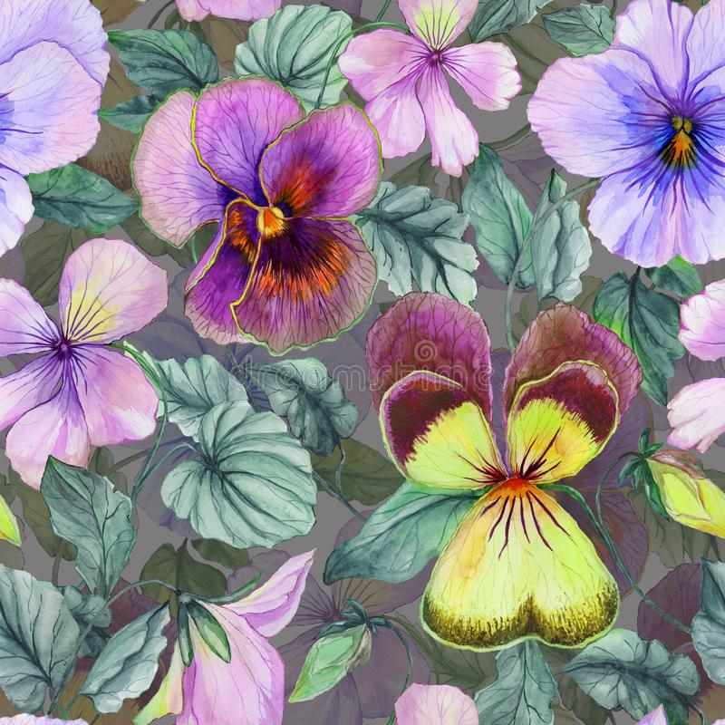 Beautiful large viola flowers with green leaves on gray background. Seamless spring or summer floral pattern. Watercolor painting. Hand painted illustration stock illustration