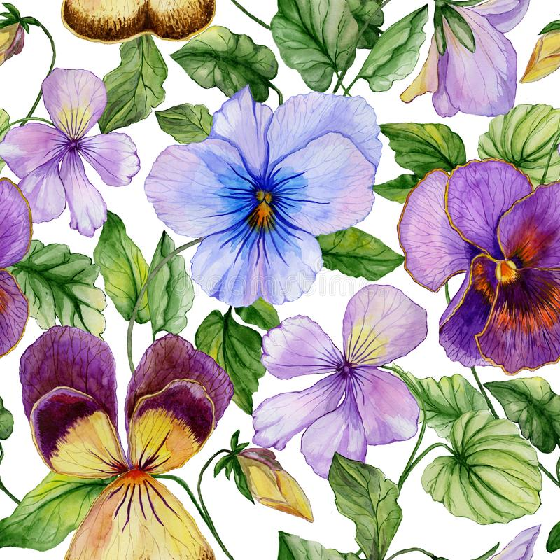 Beautiful large vivid viola flowers with green leaves on white background. Seamless spring or summer floral pattern. Watercolor painting. Hand painted stock illustration