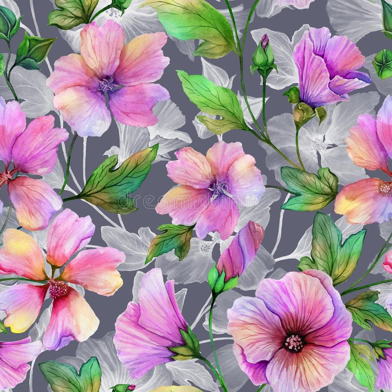 Beautiful lavatera flowers with green leaves against gray background. Seamless floral pattern. Watercolor painting. Hand painted illustration. Fabric vector illustration