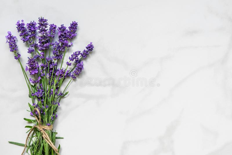Beautiful lavender flowers bouquet on white marble table with copy space for your text. top view. flat lay. Wedding or womens day background royalty free stock photos